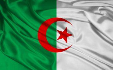دردشة الجزائر